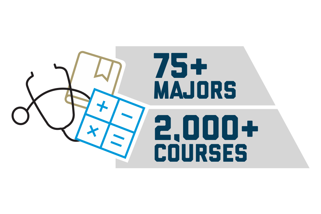 Majors and Courses